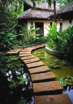 Water is a power that helps to relax, and sounds of falling water create real harmony. We've already told you how to make your garden cuter with the help of a pond. But a pond may become even more…MoreMore #WaterGarden
