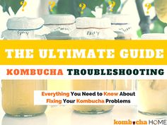 Find detailed answers to your Kombucha SCOBY & Brewing Problems here. The most comprehensive troubleshooting guide on the web!