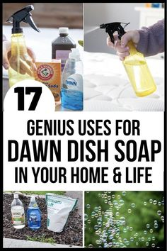 26+ Fun Things to do At Home for Adults: Museums, Concerts and More#adults #concerts #fun #home #museums Natural Bug Killer, Bubble Diy, Mattress Cleaner, Weed Killer Homemade, Cleaning Recipes, Cleaning Hacks, Rid Of Ants, Things To Do At Home, Fun Things
