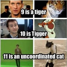 How I have to describe them to my non Doctor Who friends <-- I usually go with a drunk giraffe for Eleven, but I get wanting to stick with the cat theme
