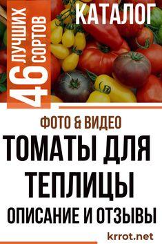 Soda, Vegetables, Gardening, Beverage, Soft Drink, Lawn And Garden, Sodas, Vegetable Recipes, Veggies