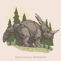 ART by BENJAMIN MACKEY — My personal spin on various species of dinosaurs! | Styracosaurus albertensis