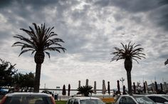 Kavala 2017 - Photos by Chronis Angelidis 2017 Photos, Palm Trees, Twin, Gallery, Photography, Palm Plants, Photograph, Photo Shoot, Twins