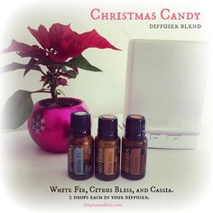 Christmas Candy diffuser blend.  2 drops each of white fir, Citrus Bliss, and cassia.  Sooooooooo lovely!