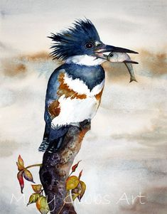 """Kingfisher"" - watercolor by Mary Gibbs (Animals)"