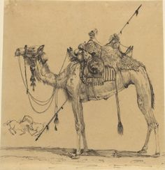 Cave to Canvas, The Camel - Rodolphe Bresdin, date unknown