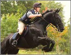 Image result for equestrian riding vest