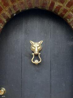 Gilded Wolf's Head Doorknocker