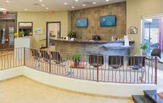 Boca Park Animal Hospital, Las Vegas, Nev. - 2014 #Veterinary Economics Hospital Design Supplement - Reception - dvm360