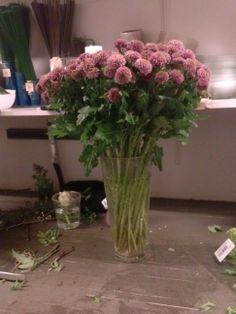 Snittet blomster Celery, Vegetables, Plants, Vegetable Recipes, Plant, Veggies, Planets