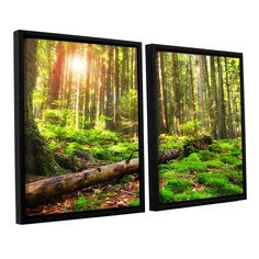 ArtWall 'Dragos Dumitrascu's Back to Green' 2-piece Floater Framed Set