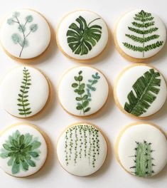 Summer style!! Perfect white and green decorated and iced cookies for a Summer Party or Wedding! Maybe as guest favors!