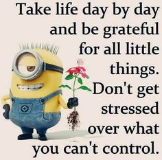 Funny Minions from Omaha AM, Monday October 2016 PDT) - 60 pics - Minion Quotes Cute Minions, Funny Minion Memes, Minions Quotes, Funny Jokes, Hilarious, Minion Humor, I Have A Secret, Secret Sale, A Day In Life