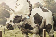 a cow-skin triceratops (dinosaur) by lightfarm studios