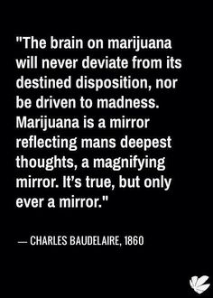 """The brain on marijuana will never deviate from its destined disposition, nor be driven to madness. Marijuana is a mirror reflection mans deepest thoughts, a magnifying mirror. It's true, but only ever a mirror."""