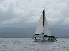 cruiser/cutter Tayana 37: http://www.yachtworld.com/boats/1985/Tayana-37-2744620/Fort-Pierce/FL/United-States