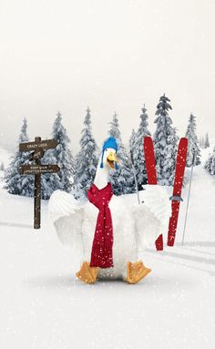 My chance to serve as an Aflac Holiday Helper.
