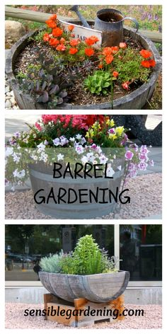 Barrel Gardening with Sensible Gardening