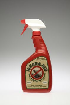 Use this to protect your homes, pools, docks, plants, trees, flowers & shrubs from iguanas, curly tails & other lizards, etc.  Animal pests such as squirrels, rabbits, frogs & toads, snakes, deer, raccoons, etc.  Garden pests such as mealybugs, beetles, white flies, thrips, leaf-chewers, aphids, spider mites, snails & more!