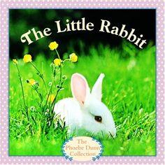 The Little Rabbit by Judy Dunn,