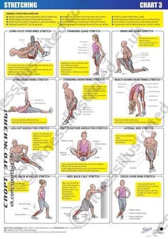 Fitness Illustrated - Instructional exercise illustrations from illustrator Matt. - Fitness and Exercises Fitness Memes, Fitness Workouts, Yoga Fitness, Health Fitness, Muscle Fitness, Body Stretches, Stretching Exercises, Quad Stretch, Sciatica
