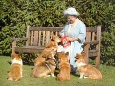 Queen Mum and her corgis. This will be me when I'm old...sitting in an English garden surrounded by my spoiled corgis.