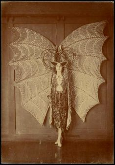 Vintage spooky bat costume, ca. 1923