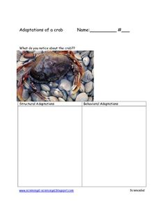 Here are some writing resources to use when teaching about animal adaptations.