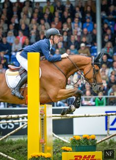 Scott Brash & HELLO SANCTOS | 2015 Grand Prix of Aachen