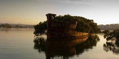 Обломки корабля «Ayrfield» в заливе Хомбуш, Австралия
