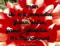 """""""İman iki eşit parçadır. Yarısı sabır,yarısı şükürdür.""""   Hz.Muhammed"""