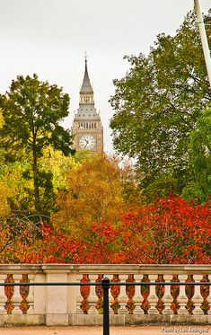 Big Ben from St James' Park, London