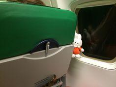 Nijntje in het vliegtuig op weg naar Sicilië.