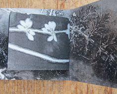 Original botanical art monoprint artist book by fieldandhedgerow