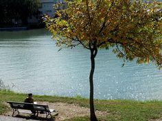 Cálida lectura - Acompañada por los últimos rayos cálidos del sol y los colores ocres del otoño. Ribera del Guadalquivir (Sevilla)