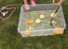 Fruit water play - children helped with the cutting of the fruit (and tasting) added in more scoops and cups