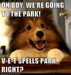 "Yeah, that's it, we're going to the ""park""....."