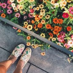 Also, I was kind of (really) obsessed with these flowers and how well my shoes matched them (shoutout to @keds)