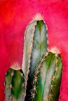 Cactus Mexicano Canvas Print / Canvas Art by Maribel Garzon Mexican Cactus Painting – Mexican Cactus Fine Art Print Cactus Painting, Cactus Art, Cactus Plants, Cacti, Cactus Decor, Art Aquarelle, Watercolor Paintings, Face Paintings, Painting Canvas