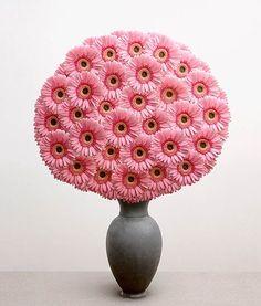 pink Gerber daisies: photography by Vanzoetendaal