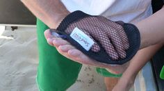 Sand-Off! Sand Removal Mitt #travel #beach #accessories #outdoorgear #outdoorplay #coolstuff #coolthingstobuy