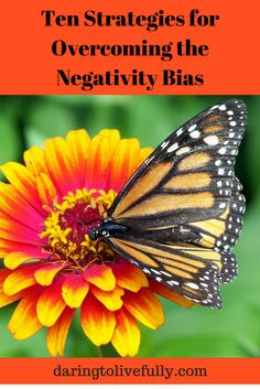 Negativity bias is the human tendency to be more easily influenced by and to recall negative experiences, instead of neutral or positive ones. Negative Thinking, Negative Thoughts, Kids Mental Health, Behavior Management, True Beauty, Positivity, Positively Positive, Neutral, Neuroscience
