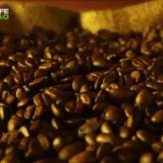 Vídeo do Lançamento: Shake Mocaccino da Herbalife.... .'. compre #herbalife:  http://www.focoemvidasaudavel.com.br contato@focoemvidasaudavel.com.br