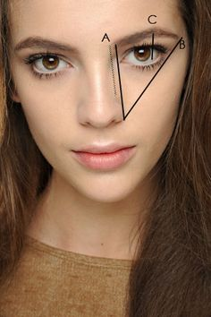 Shaping brows. A) inner brow should align with outter nose. C) The highest point (The arch) should line up with the outer iris.(The colored portion of eye.) B) Use the same outter point of nose from line A - go diagonal from that point towards outter corner of bottom lashes. (imaginary line into hair line) connect C and B (do not pass the imaginary line.)