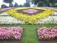Indiana Amish. Quilt gardens
