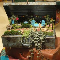 A well traveled suitcase is the perfect setting for your mini garden! Must get motivated to do this. I absolutely love it! Mini Fairy Garden, Fairy Garden Houses, Gnome Garden, Garden Art, Garden Design, Box Garden, Landscape Design, Pot Jardin, Garden Terrarium