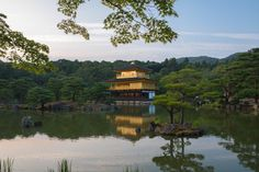 Five views of the Golden Pavilion or Kinkaku, the main attraction of Rokunji (aka Kinkakuji) temple in Kyoto, Japan. Main Attraction, Exotic Places, Travel Images, Pond, The Good Place, Mansions, Luxury, House Styles