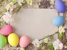 Easter Background with Eggs and Spring Branches