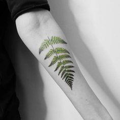 Fern Tattoo by vt_kazantsev