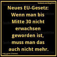 diegeilsten_EU-Gesetz.png